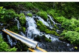 Живата вода в природата